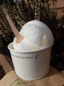 Vintage Ice Cream Van hire Pollys Parlour